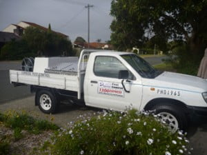 Pest Control Perth Ute