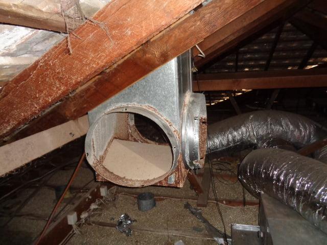 loft damage